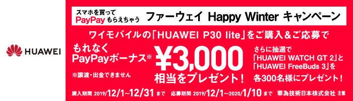 HUAWEI P30 lite 新登場