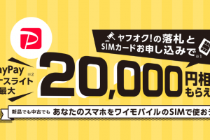 ワイモバイルSIM契約+ヤフオク落札