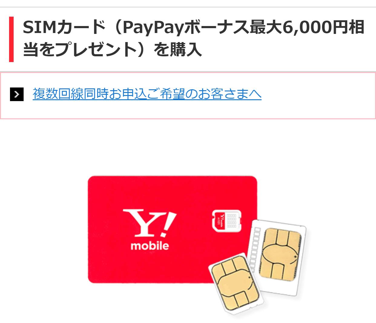 SIMカードPayPayキャンペーン